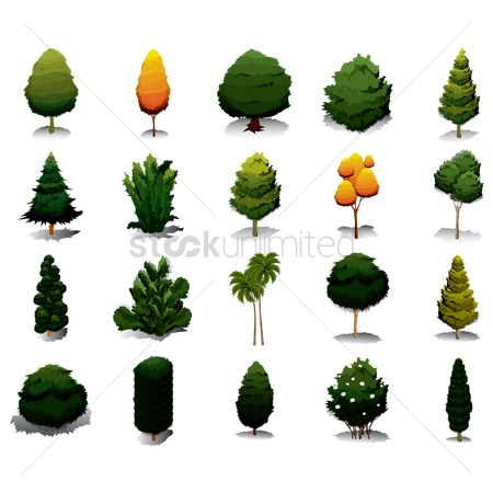 Nature : Collection of trees