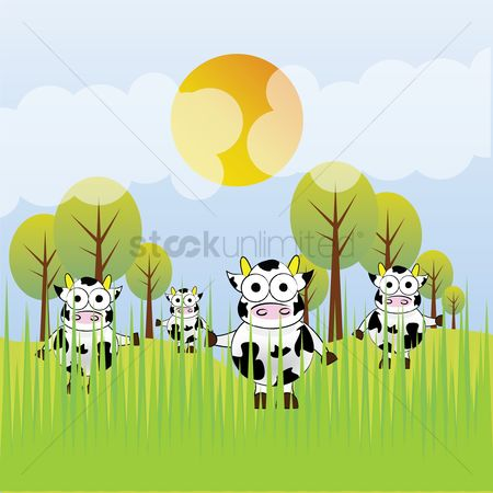 Grass : Cows in a field