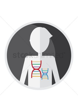 Dna : Dna structure in human