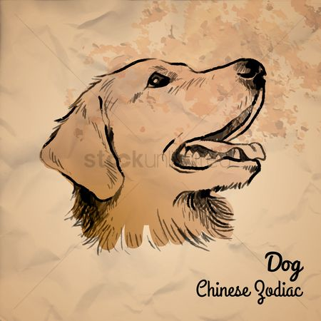 Hand drawn : Dog chinese zodiac