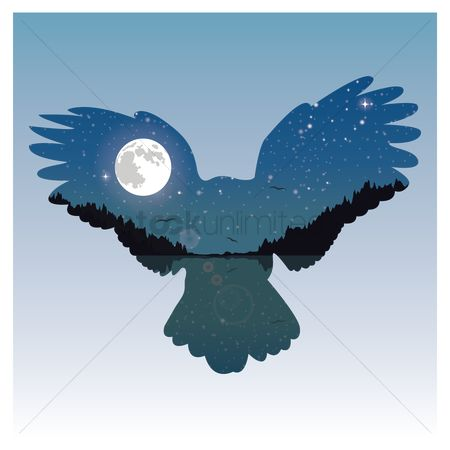 Moon : Double exposure bird and night sky