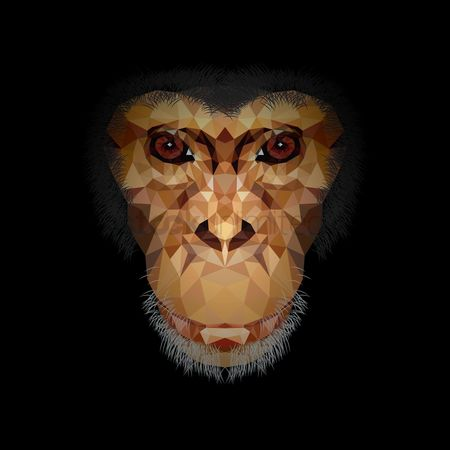 Textures : Faceted chimpanzee