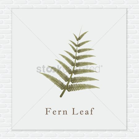 Brick : Fern leaf