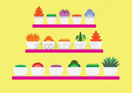 Racks : Flower pots in rack