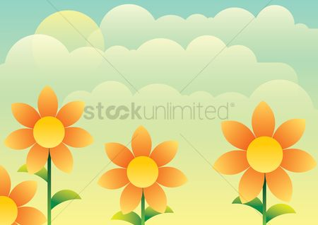 Picture : Flowers on a sunny day