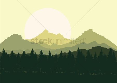 Mountains : Forest landscape