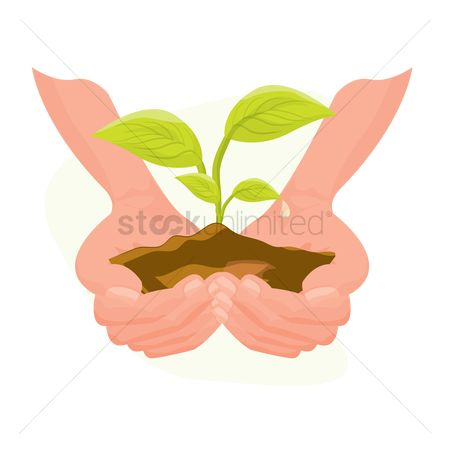 Shield : Hands holding a plant