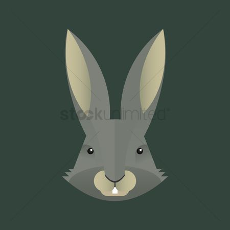 Hare : Hare