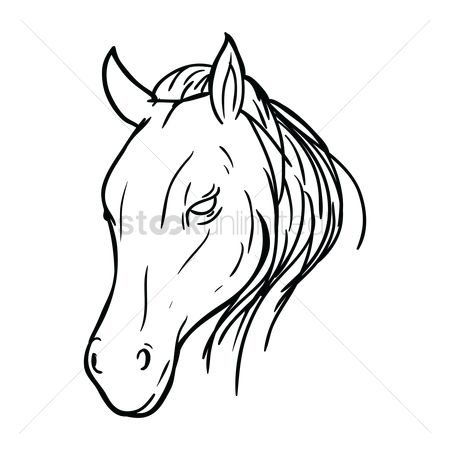 Animal : Horse face