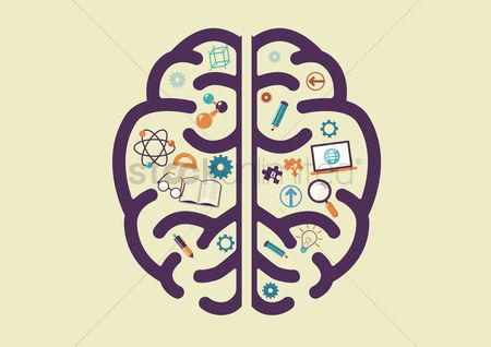 Magnifying : Human brain with education concept