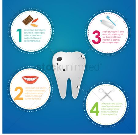 Dentist : Infographic of tooth