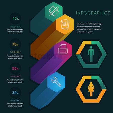 Supply : Infographic template design