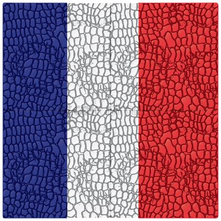 Nationality : Leather texture france flag background