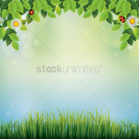 Grass background : Leaves background