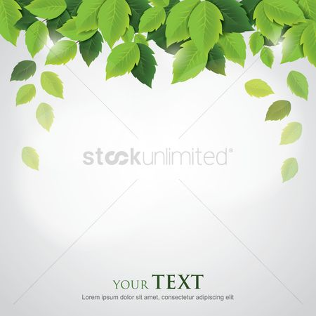 Sample text : Leaves wallpaper