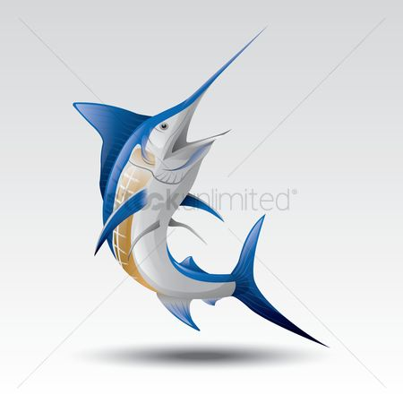 Marine life : Marlin fish