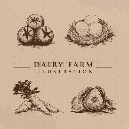 Healthy eating : Organic farm products