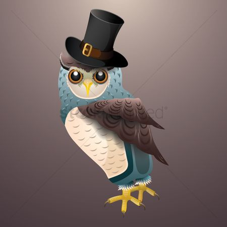 Claws : Owl wearing hat