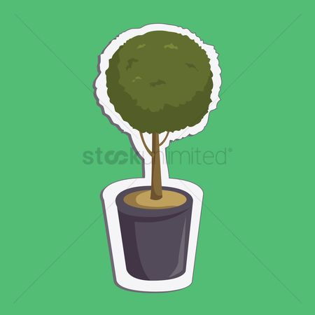 Background : Plant on green background