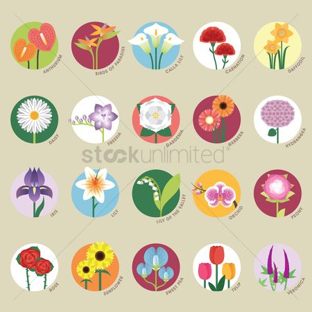 Stems : Set of flower icons