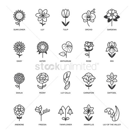 Rose : Set of flower icons