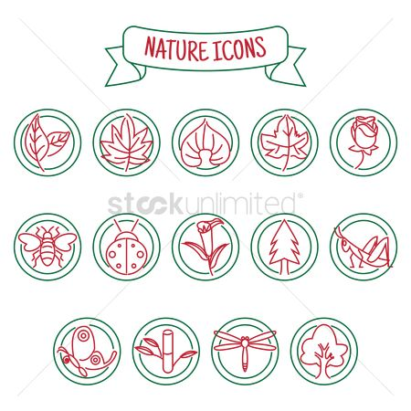 Ladybird : Set of nature icons