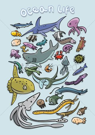 Character : Set of ocean life icons