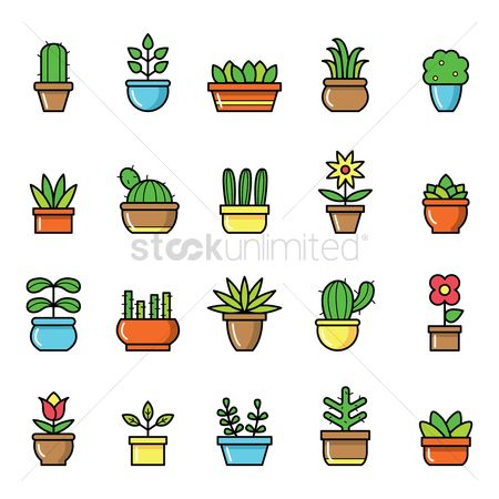 Flower pot : Set of potted plants
