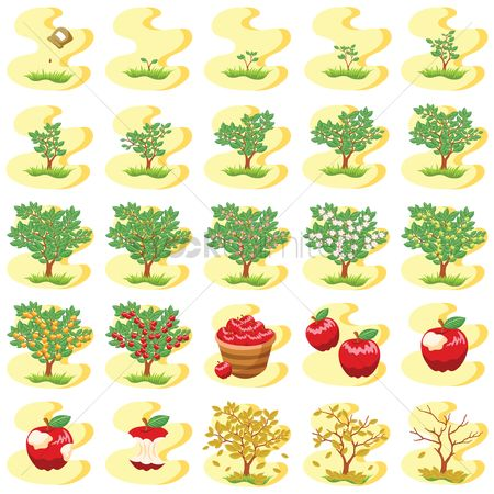 Fresh : Set of tree icons