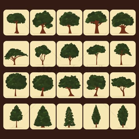 Cones : Set of tree icons