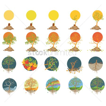 Season : Set of tree icons