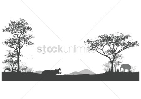 Huge : Silhouette of wildlife in its natural habitat