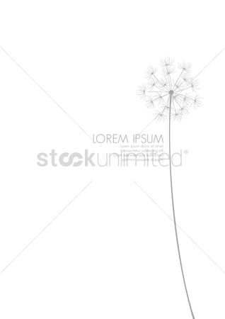 Clean : Simple background with a dandelion