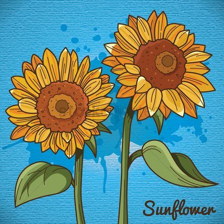 Fragrance : Sunflower