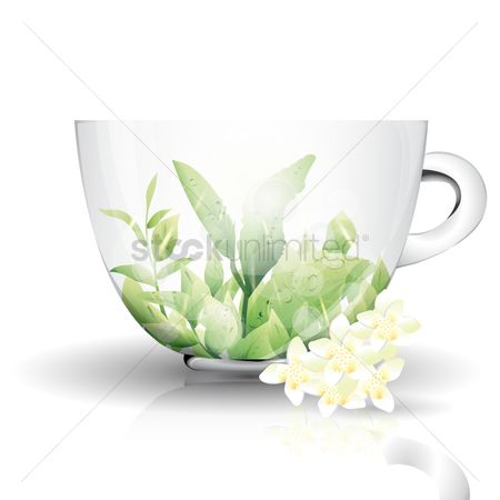 Picture : Teacup and herbs