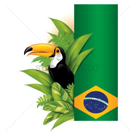 Brazil : Toco toucan with brazil banner