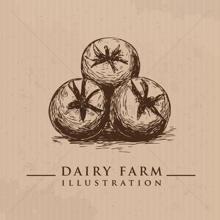 Dairy : Tomatoes