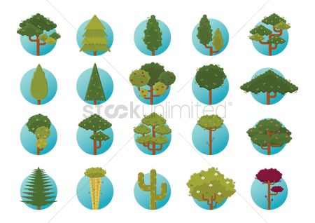 Cactuses : Tree icons