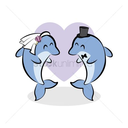 Dolphins : Wedding of dolphin