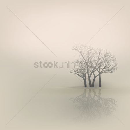 Season : Winter trees by the lake background