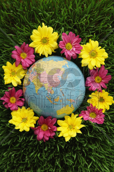 globe on grass surrounded by flowers stock photo