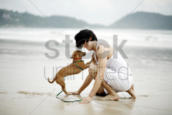 man playing with his dog on the beach stock photo