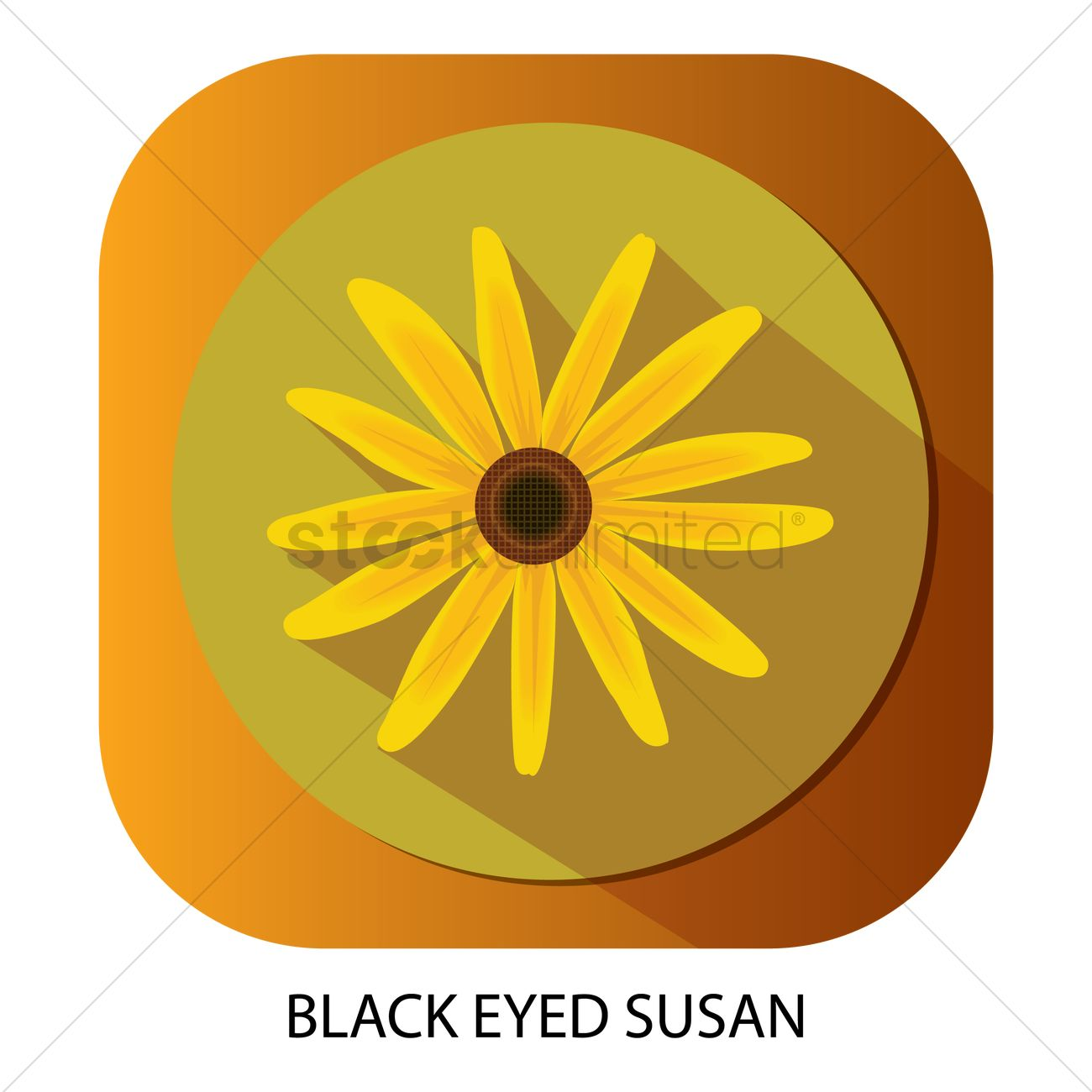 Free Black Eyed Susan Stock Vectors Stockunlimited