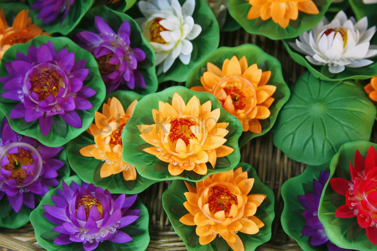 Colorful Plastic Lotus Flower Decorations Stock Photo 1844117