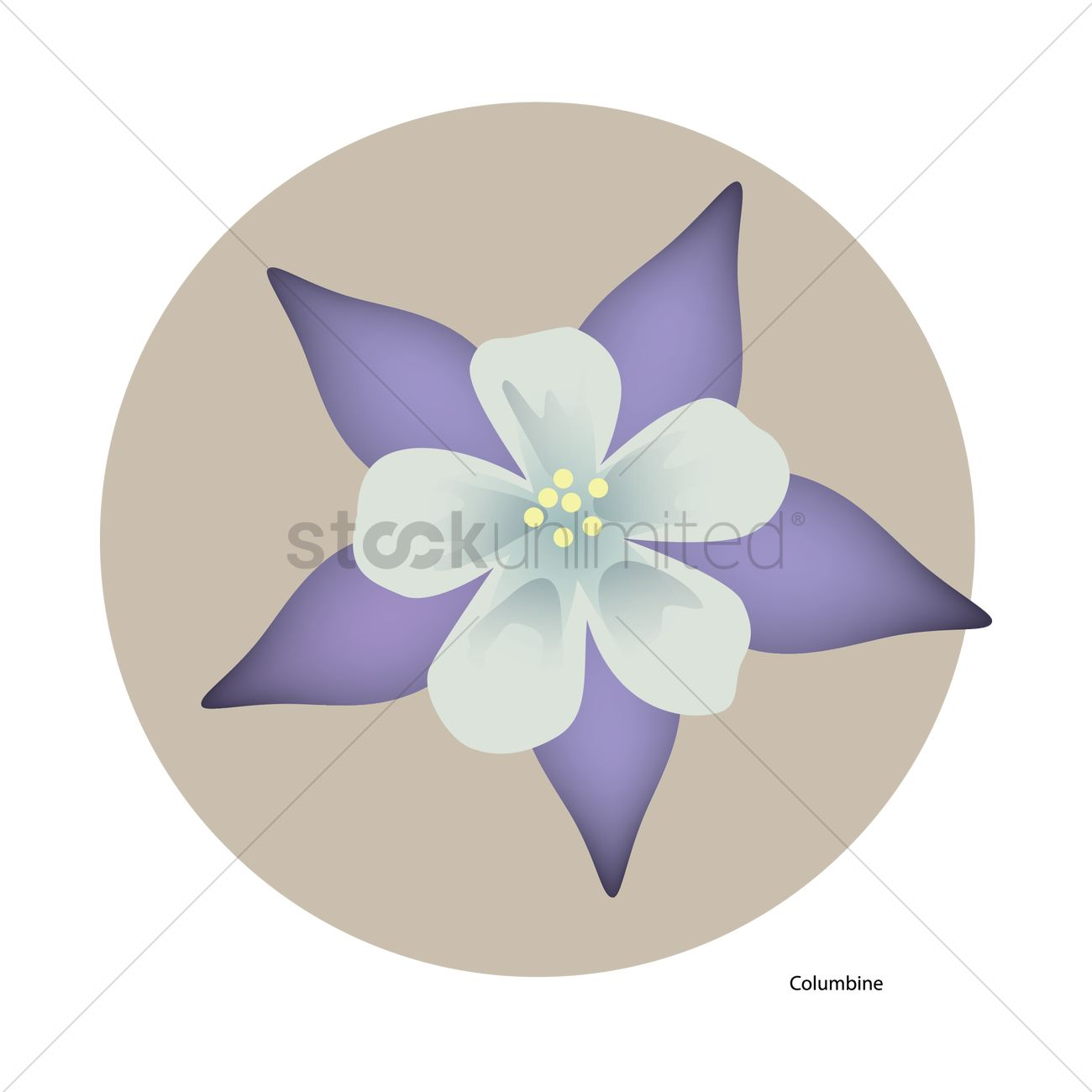 Columbine flower vector image 1431633 stockunlimited columbine flower vector graphic izmirmasajfo