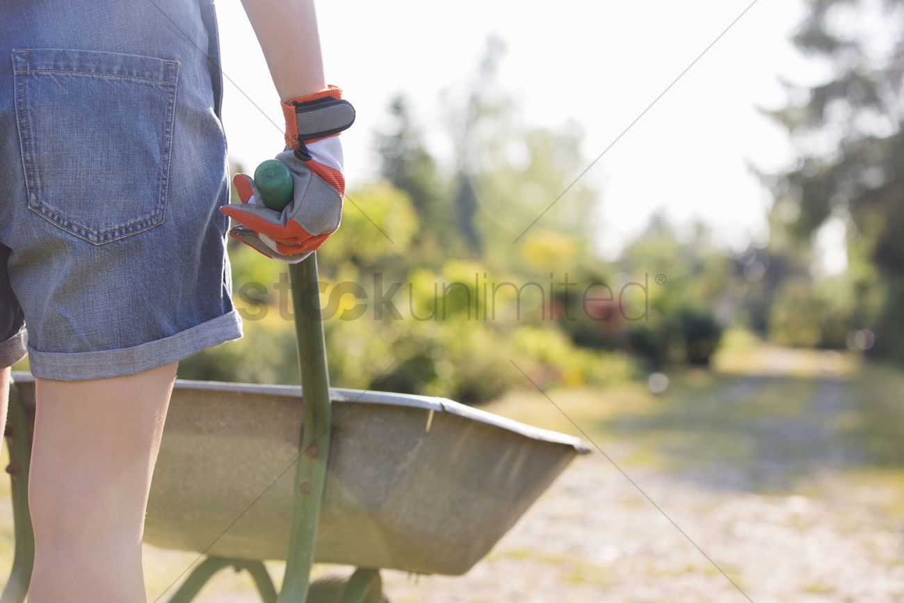 Midsection rear view of female gardener pushing wheelbarrow at plant