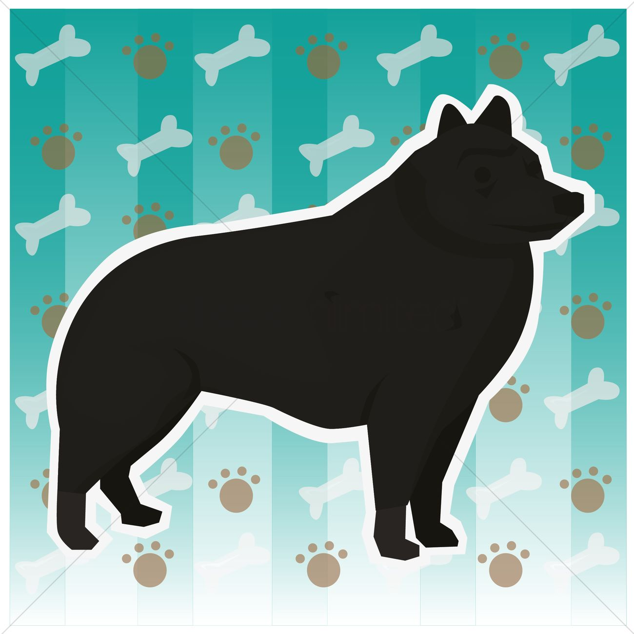 free schipperke dog vector image 1398445 stockunlimited
