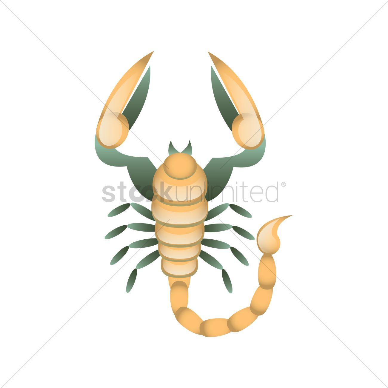 Scorpio horoscope design Vector Image - 1989305 | StockUnlimited