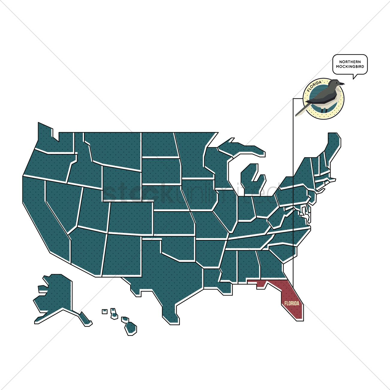 Us Map With Florida State Bird Vector Image 1567461 Stockunlimited - Florida-in-us-map