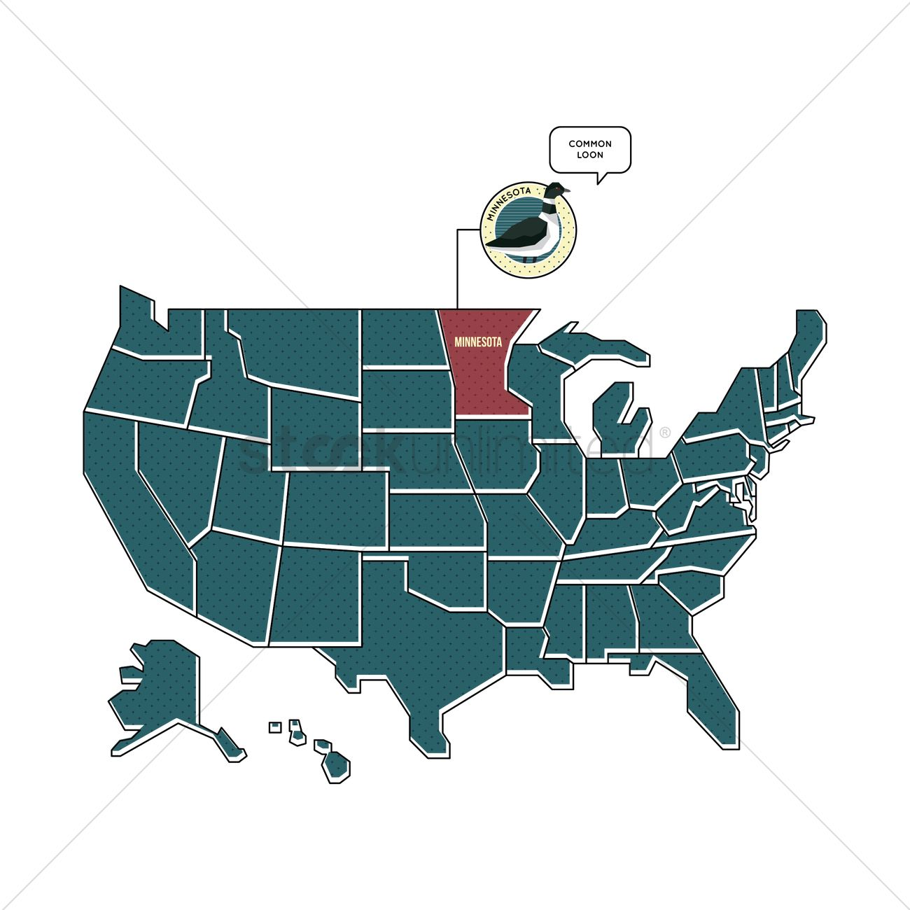 Us Map With Minnesota State Bird Vector Image 1567445 Stockunlimited